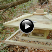 Best for Birds Bird House